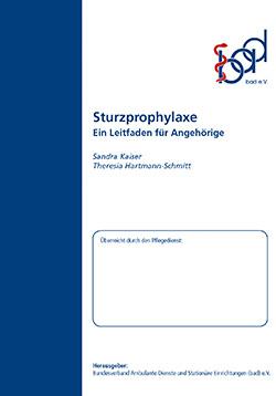 Ratgeber Sturzprophylaxe (ambulant)